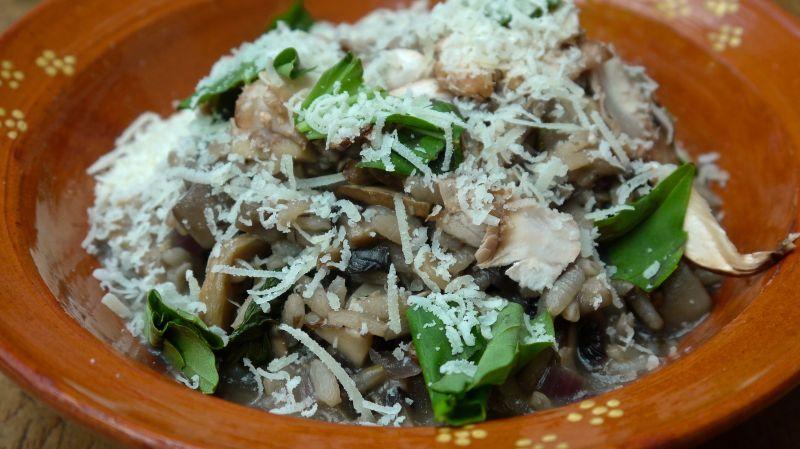 mushroom risotto 3
