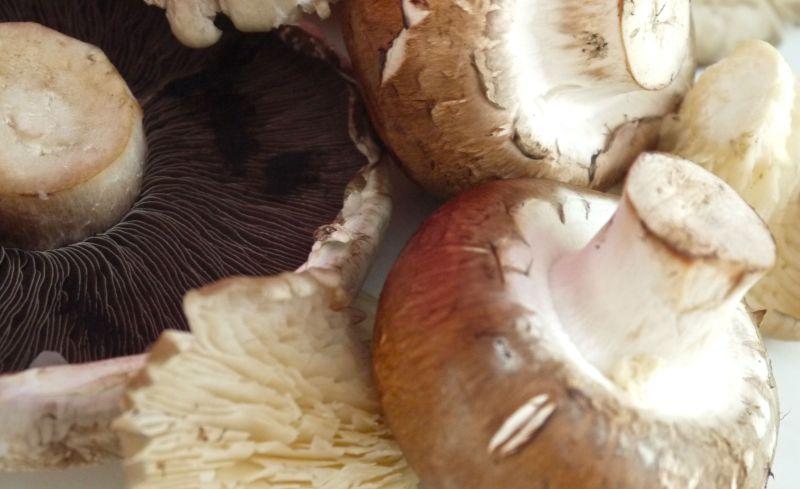 mushroom risotto2